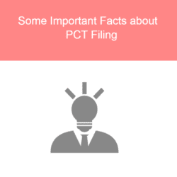 Some Important Facts about PCT Filing-1