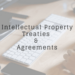 IP Treaties