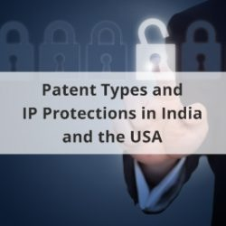 Patent Types and IP Protections in India and the USA