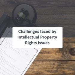 Challenges faced by Intellectual Property Rights Issues