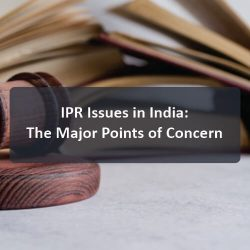 IPR-issues-in-india-the-major-points-of-concern